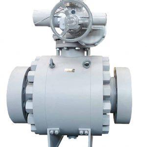 TIV valve
